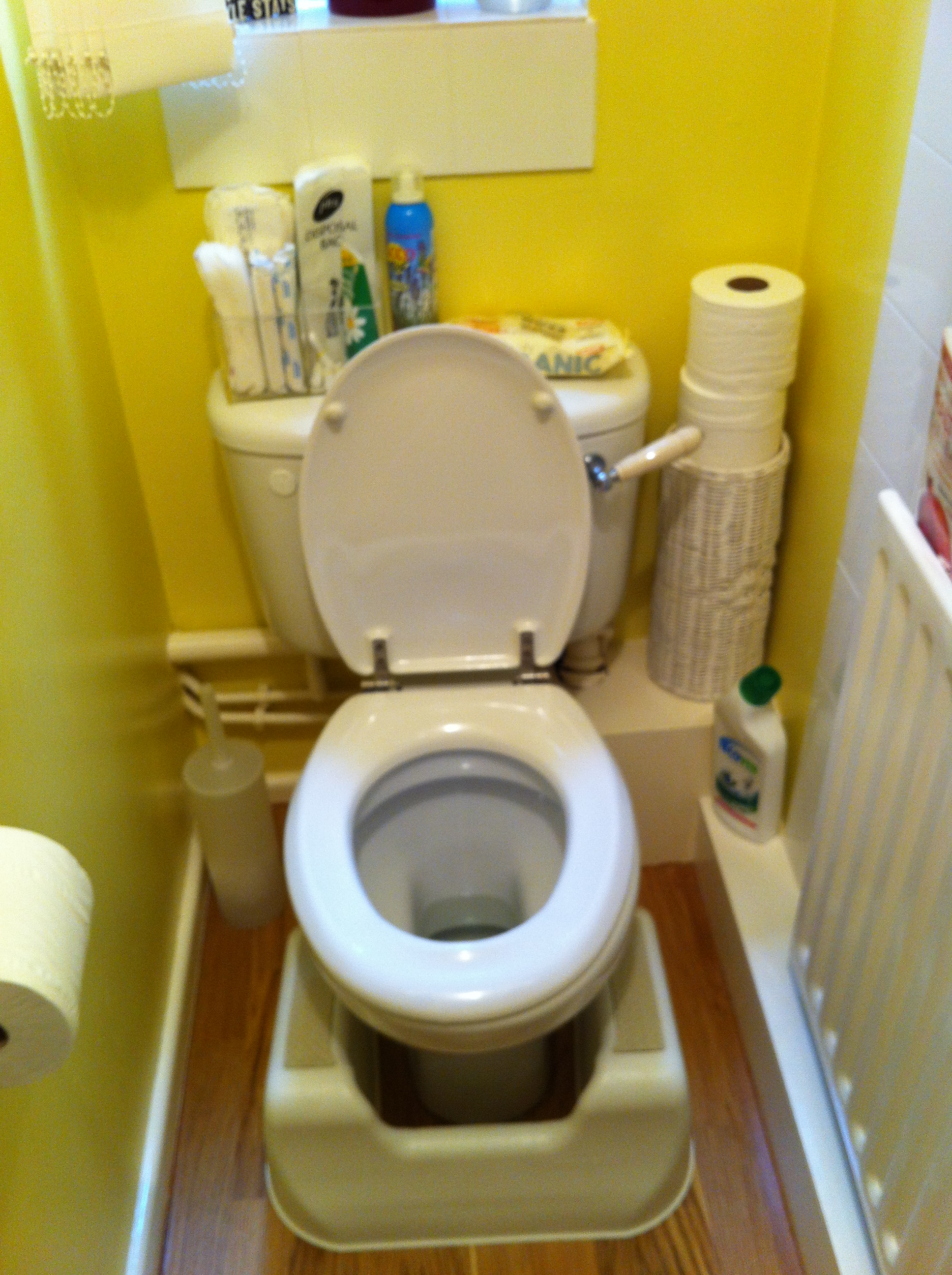 A Snapshot Of The Toilet At My Clinic. Can You See The U0027health Step